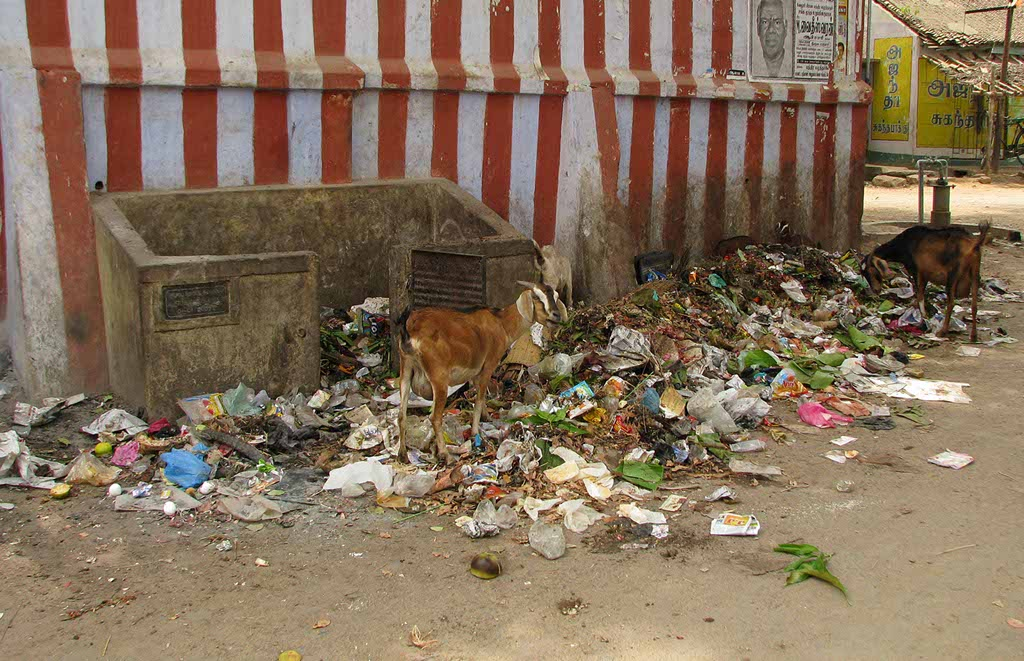 The National Green Tribunal announced on Monday that people who dispose garbage at inappropriate places and open areas will have to pay fine of Rs 10,000.