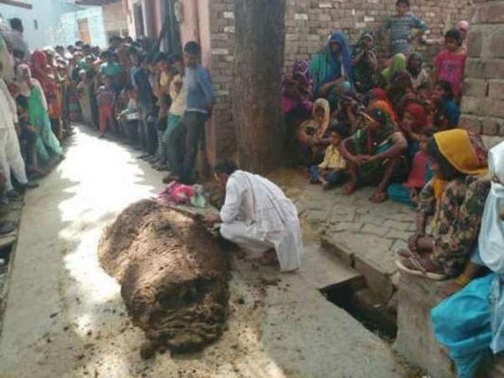 35-year-old Devendri from Uttar Pradesh died after her husband buried her under cow dung to cure her heal her from a snake bite.