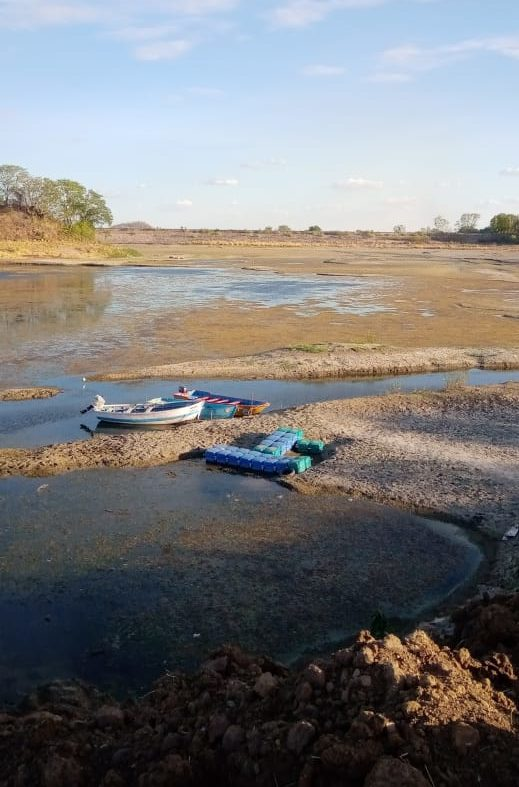 Depleting water level at adds to water crisis: Situation in Nagpur further aggravated this month with no water in the nearby Navegaon Khairi dam.