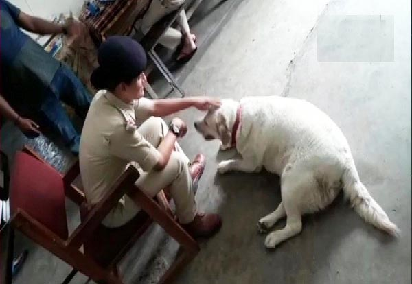 Chhoti Bajaria Police Station in Madhya Pradesh's Sagar became home for a pet dog after the owners of the dog were sent to prison for murder.